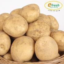 감자 2kg 대 (개당 90~110g 내외)