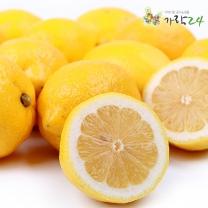 [가락24]레몬 4.8kg 40과 내외/센터직송