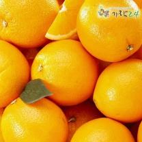 [가락24]미국 발렌시아 오렌지 18kg 72과내/센터직송