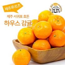 [인하네] 제주 하우스감귤 3kg(45~60과, 꼬마)