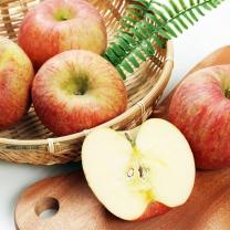 [가락24]아삭 달콤한 사과 10kg(35-45개입)/새생명