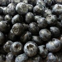 (인빌푸드)2018년산 내장산마을 블루베리 1kg