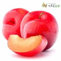 [가락24]맛있는 자두 1kg(16-20과내외)/센터직송