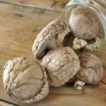 국내산 건표고버섯 80g