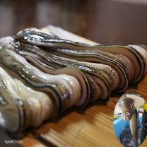 통영 바다장어 2kg (중/8-15미) (소스 증정)