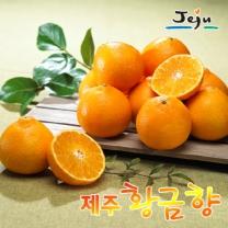 [제주푸드] 제주 황금향 2kg(5~15과)