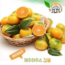 [제주푸드] 제주 하우스감귤 3kg