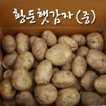 (인빌푸드)황둔 햇감자 10kg(중)