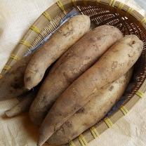 (인빌푸드)솔향기 야콘(선물용) 3kg