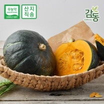 무농약 블랙 단호박 4kg 4-6과