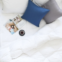[에인하우스] 모달코튼 구스다운 이불솜 Q,1000g