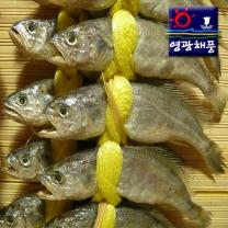 [영광해풍]장대굴비 3호(20미.1,800g내외)