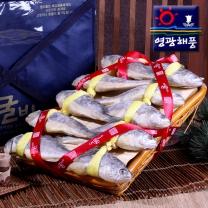 [영광해풍]딱돔굴비 3호(10미.25cm내외)