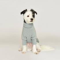 시그니쳐 강아지옷 목폴라 니트 민트