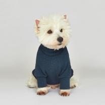시그니쳐 강아지옷 목폴라 니트 블루