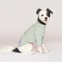 시그니쳐 강아지옷 하프넥 골지티셔츠 민트