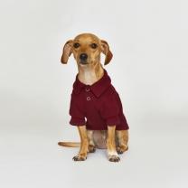 어썸 피케 셔츠 강아지옷 버건디