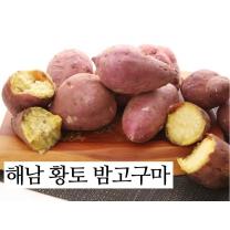 [농협/산지직송] 해누리 해남 황토 햇밤고구마 3kg(중)