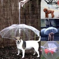 [바보사랑]더홈스 강아지우산 애견우산 펫우산