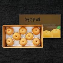 나주 배 선물세트 5kg 8-9과