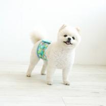 [바보사랑]파인애플 강아지 매너벨트