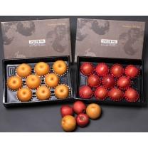 [대구경북능금농협/산지직송] 사과 4kg(10-13내) + 배 5kg(8-10내) 세트
