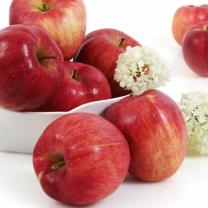 맛좋은 붉은 햇 사과 3kg(9-13과)