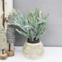 후로킹 전나무 부쉬