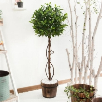 [바보사랑]월계수나무 120cm 6-1 조화나무 V [조화]