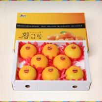 제주황금향2kg(7~10入)