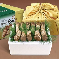 국내산 자연송이 자연산 송이버섯 (특상품A) 500g