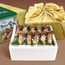 국내산 자연송이 자연산 송이버섯 (특품B) 1kg