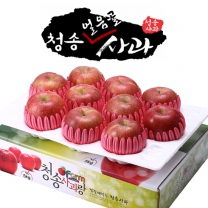 아침햇살농장 청송 얼음골 사과 팬캡포장 4kg(9~12入)