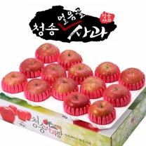 아침햇살농장 청송 얼음골 사과 팬캡포장 4kg(13~14入)