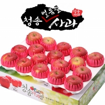 아침햇살농장 청송 얼음골 사과 팬캡포장 4kg(15~17入)