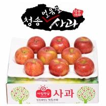 아침햇살농장 청송 얼음골 사과 2.5kg(8~10入)