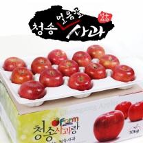 아침햇살농장 청송 얼음골 사과 10kg(26~28入)