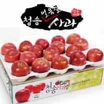 아침햇살농장 청송 얼음골 사과 5kg(15~17入)