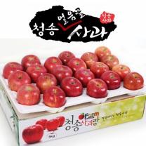 아침햇살농장 청송 얼음골 사과 5kg(19~21入)
