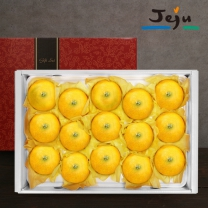 [제주바람] 제주직송 황금향 5kg 중과(20~27과) 선물세트