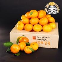 [현가원] 서귀포 하례마을 노지감귤 3kg (대과, L, 30과 내외)
