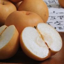 행복한농부 아삭한 배 5kg 9-10과(가정용)