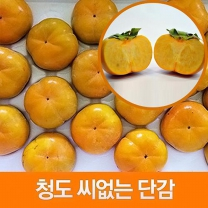 (인빌푸드)(예약)청도 씨없는단감 5kg(중/26-30과)