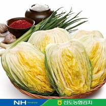 선도농협 선장절임배추10kg/4~5포기/HACCP인증