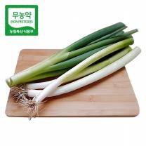 [가락24]친환경 무농약 흙대파 10kg/시크릿