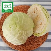 [가락24]친환경 무농약 양배추 5kg/시크릿