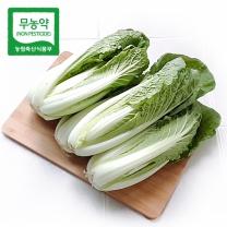 [가락24]친환경 무농약 얼갈이 4kg/시크릿