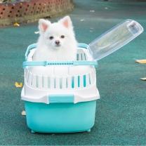 펫토리아 강아지 고양이 이동장 13302L 블루 캐리어