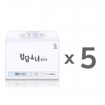[청담소녀] 생리대 4개월 패키지 [중형/대형]