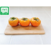 [가락24] 친환경 무농약 단감 10kg / 40내(250g 이상)/시크릿
